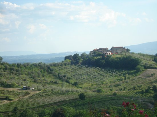 La Poggiolaia: View from our bedroom window