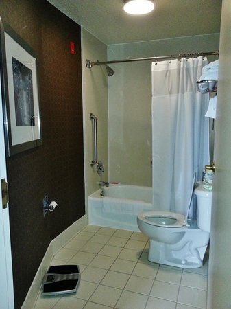 Springhill Suites by Marriott Orlando North/Sanford: Bathroom