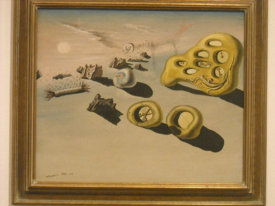San Diego Museum of Art: Salvador Dali