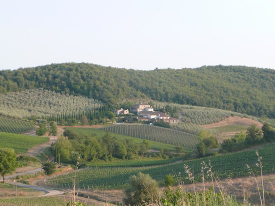 Il Paggino : View