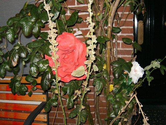 B&B Marnix: flowers