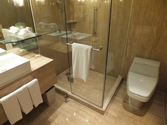 Room 1037 Bathroom Picture Of Holiday Inn Bangkok Silom