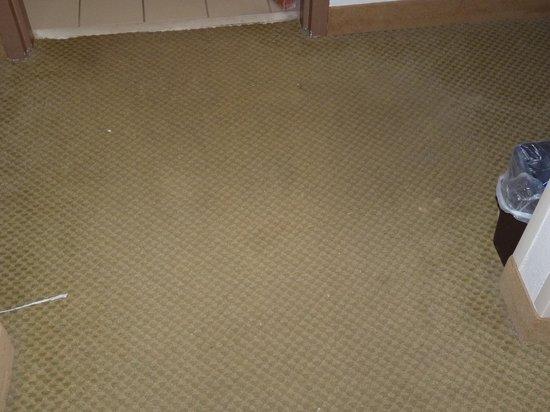 Holiday Inn Express Myrtle Beach-Broadway @ the Beach: very dirty carpet
