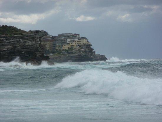 Bronte Beach: Surf