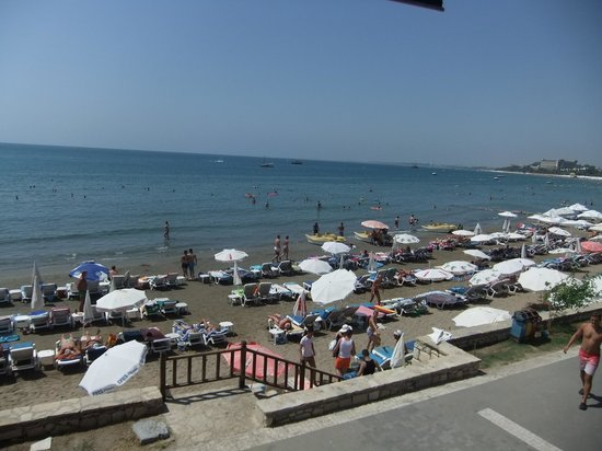 Tropic Hotel: flott strand