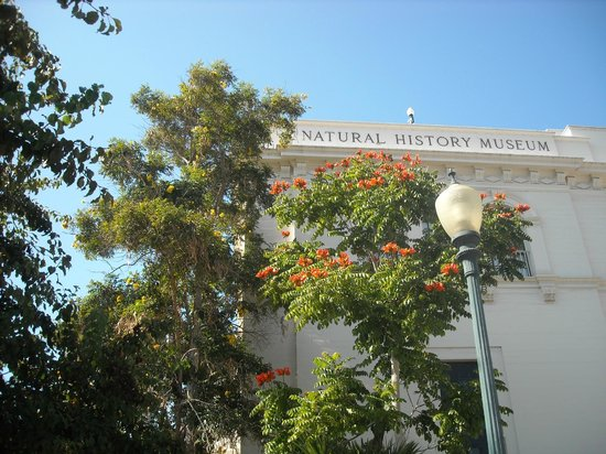 San Diego Museum Natural History Hours