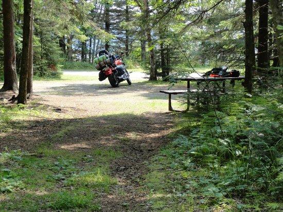 Neys Provincial Park : Clean campsites