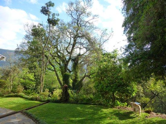 Porcupine Ridge Guest House: Magnifique environnement