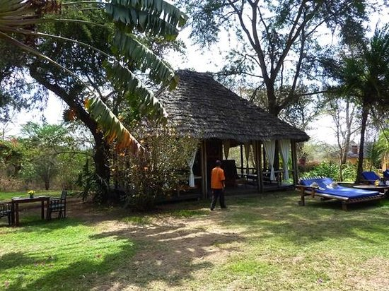 Arusha Safari Lodge: Pool cabana with bar, lounge and lunch service