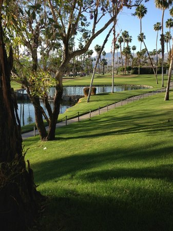 Omni Rancho Las Palmas Resort & Spa: View from the patio looking right