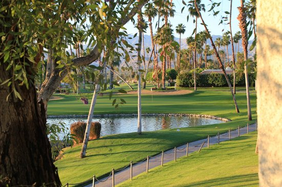 Omni Rancho Las Palmas Resort & Spa: View from the patio
