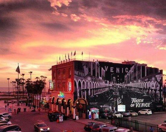 Samesun Venice Beach: Hostel at Night