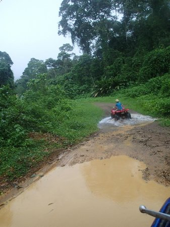 Jungle ATV Quad Tours: puddles