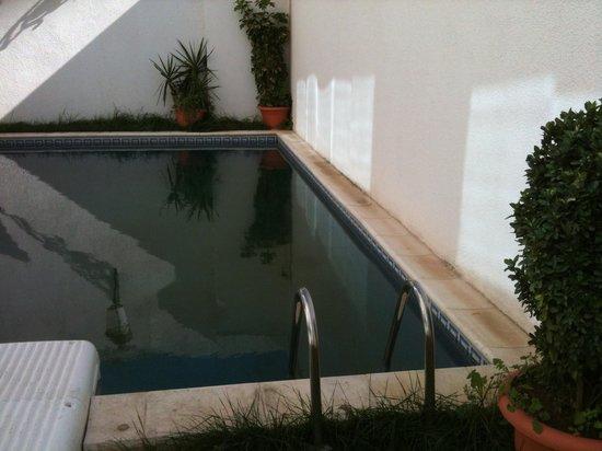 Hotel Oasis : Swimming pool
