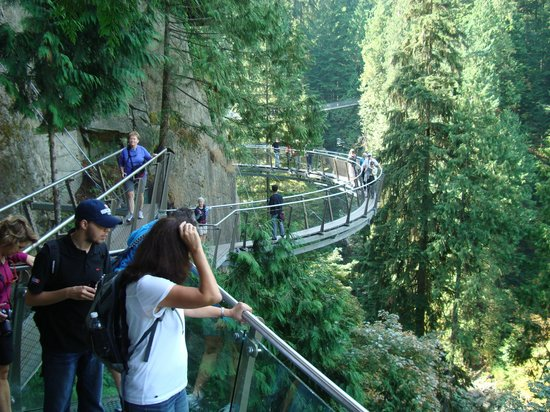 capilano swinging bridge