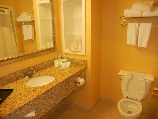 Holiday Inn Express Hotel & Suites: Bom banheiro, bem limpo.