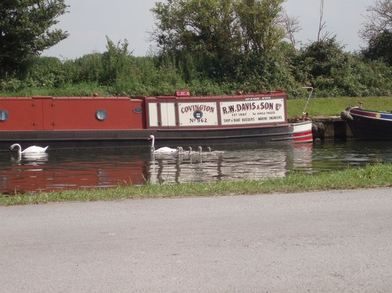 The Stables Cafe: narrowboat