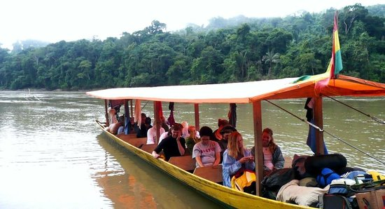 Deep Rainforest Tour Operator