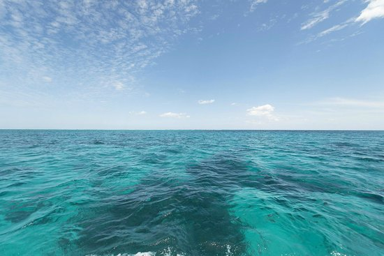 Belize European Adventures: Clear waters around the cayes