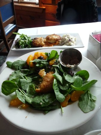 The Brown Dog Cafe & Wine Bar: goat cheese salad with walnut honey dressing