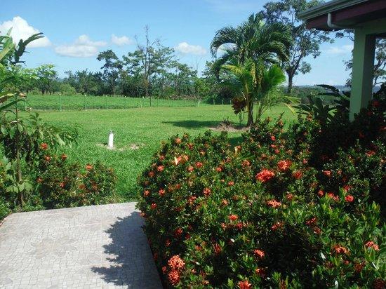 Hotel La Pradera: beautiful pathway