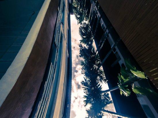 Guitar Residence: Vista invertida da piscina