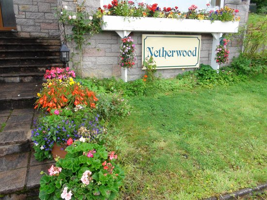 Netherwood Bed And Breakfast: garden