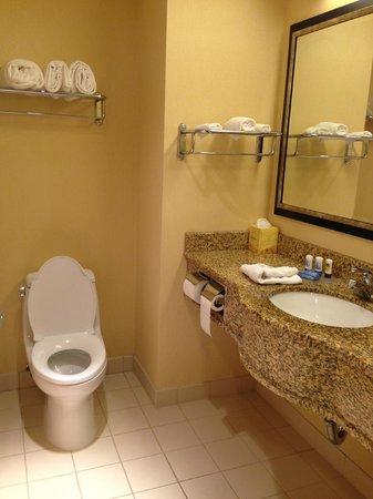 Fairfield Inn New York Long Island City/Manhattan View: Bathroom