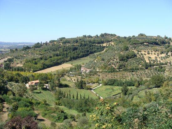 Agriturismo Pratovalle : Beautiful Tuscan Views