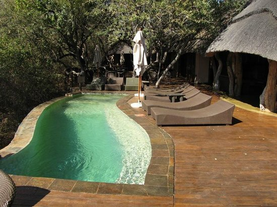 Motswiri Private Safari Lodge : Pool and Clubhouse