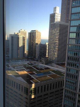 Sofitel Chicago Water Tower : View from the room