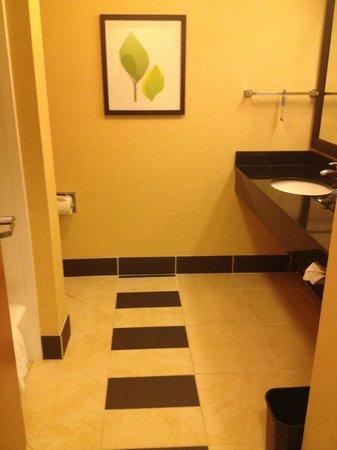 Fairfield Inn & Suites Montgomery-EastChase Parkway: Bathroom