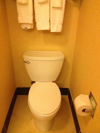 Fairfield Inn & Suites Montgomery-EastChase Parkway: Toilet