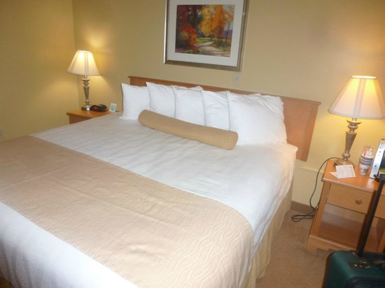 BEST WESTERN PLUS Windjammer Inn & Conference Center : King Sized Bed Room