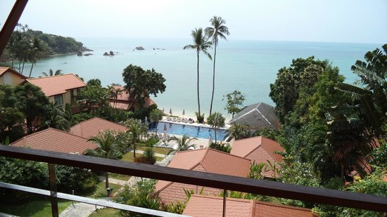 Palm Coco Mantra: View from room
