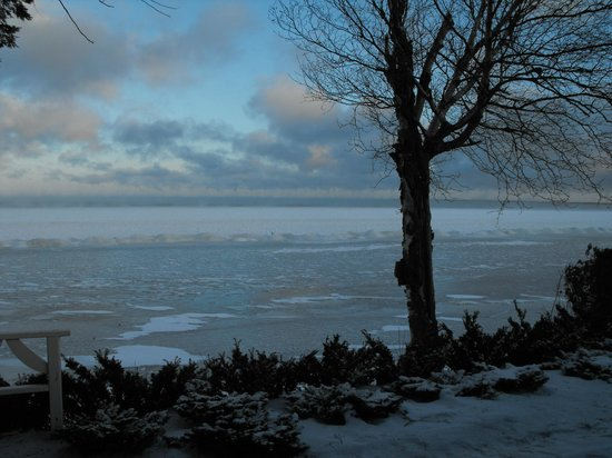 The Briars: View from my cottage, Boxing Day, 2013