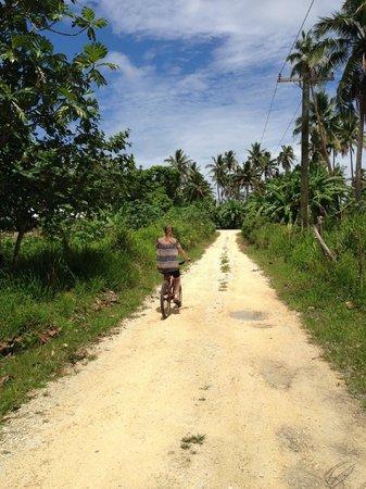 Heilala Holiday Lodge : Bike riding down the driveway at Heilala