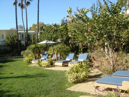 Pavilion Hotel: Courtyard