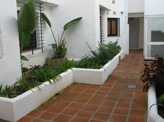 Apartamentos Fuerte Calaceite: Back yard