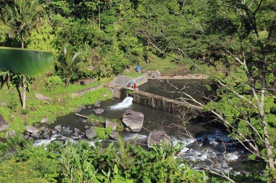 Puri Bunga Resort and Spa: Pool