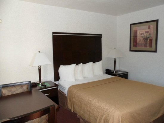 Quality Inn South Bluff: comfortable bed and soft pillows