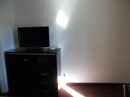 Quality Inn South Bluff : TV, Microwave and fridge