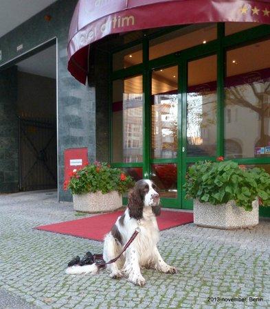 Hotel Artim: Hotellet er hundevenligt