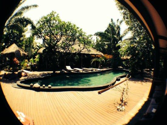 The Green Room Seminyak: Pool
