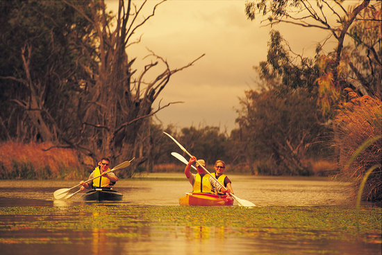 Great park along the Murray - Review of Blanchetown