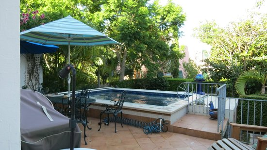 Kingston House B&B : La piscina