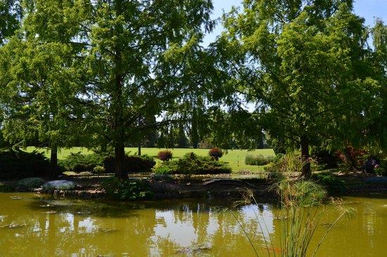 La Grotta Hotel : Ботанический сад