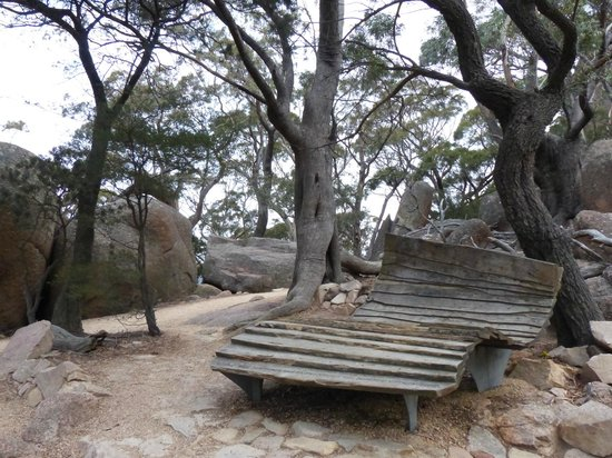 Wineglass Bay Lookout: This saddle seat was designed & constructed by School of Architecture Student since 2000