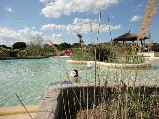 Piscine du camping foto di yelloh village secrets de for Camping en camargue avec piscine