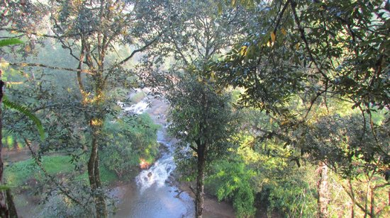 Ela Ecoland Nature Retreat: View of the  stream from the Treehouse
